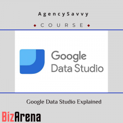 AgencySavvy – Google Data...