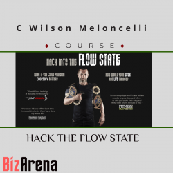 C Wilson Meloncelli - HACK...