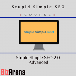 Stupid Simple SEO 2.0 Advanced