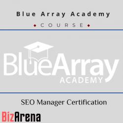 Blue Array Academy - SEO...